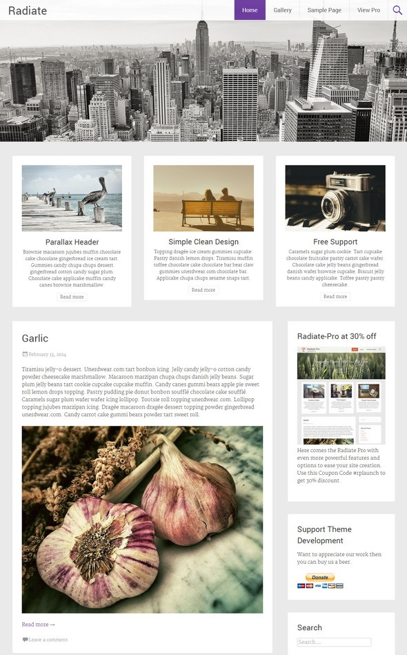 Radiate WordPress Theme