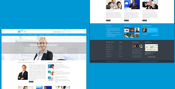 Accesspress WordPress Theme